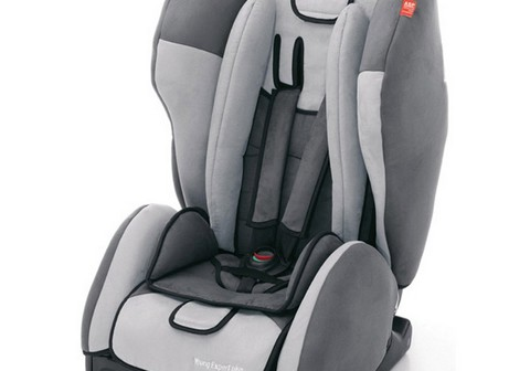 Recaro Young Expert Plus Asphalt/grey